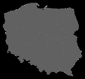 mapa-polska-szara-bez-nazw