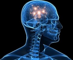 mózg-psychika copy
